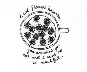 flowers, quote, and beautiful image