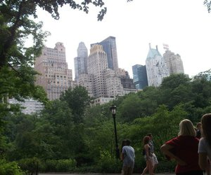 Central Park, photography, and fifth ave image