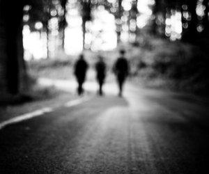 away, path, and tree image