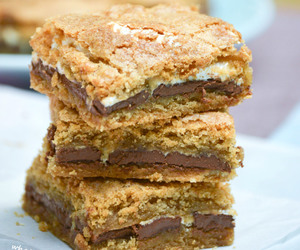 bars and s'mores image