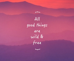 free, good things, and inspiration image