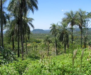 landscape and paraguay image