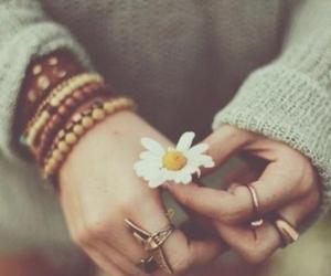 fashion, i ❤ autumn, and girl image
