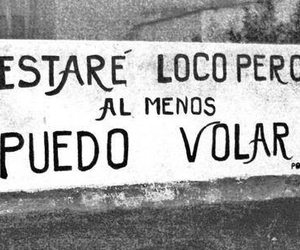 fly, loco, and accion poetica image
