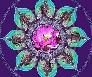 mandala and psychedelic image