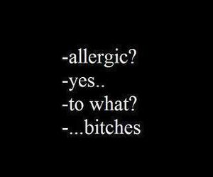 bitch, allergic, and quote image