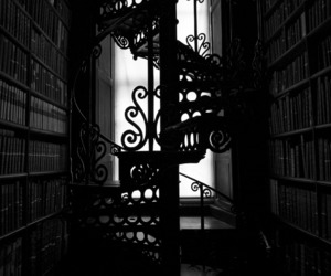 black and white, books, and library image