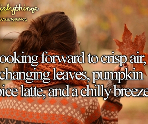 fall, leaves, and just girly things image