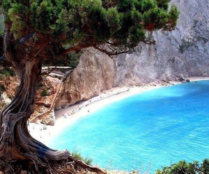 bay, rocks, and tree image