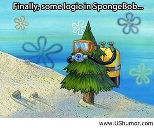 spongebob, funny, and logic image
