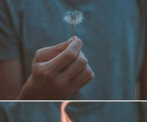 fire, hand, and flower image