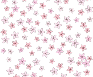 flowers, pink, and png image