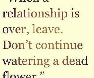 Relationship, quote, and flower image