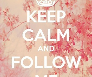 keep calm, follow, and follow me image