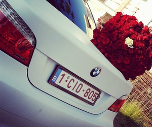 car, bmw, and rose image