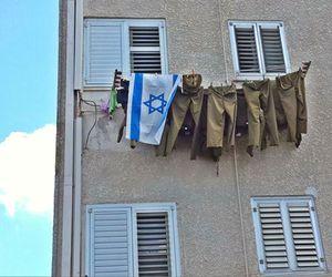 idf and israel image