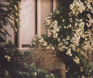 vintage, flowers, and indie image