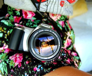 camera, canon, and floral image