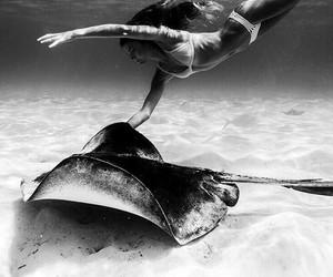 girl, ocean, and animal image