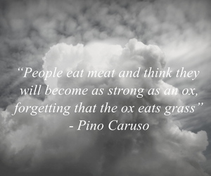 food, quote, and vegan image