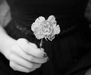 black and white, flower, and pale skin image