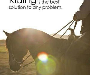 horse, problem, and riding image