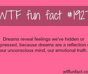 dreams, did you know, and wtf fun facts image