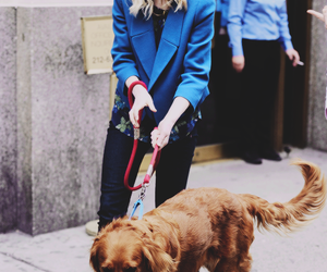 emma stone, dog, and cute image