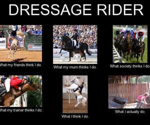 dressage, equestrian, and funny image