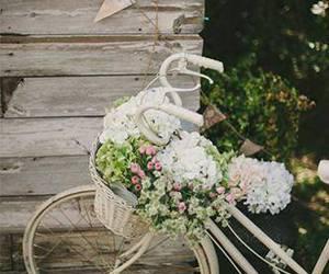flowers, vintage, and bicycle image