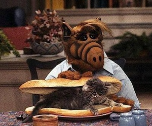alf and cat image
