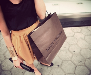 bag, louis, and shopping image