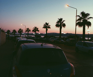 hipster, palm trees, and sky image