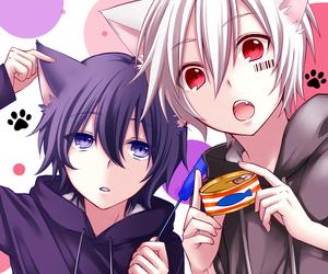 anime, boy, and neko image