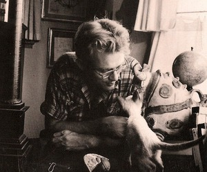 cat, east of eden, and james dean image