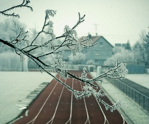 winter, snow, and sport image