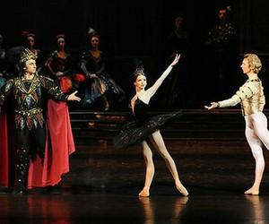 ballet, swanlake, and odile image