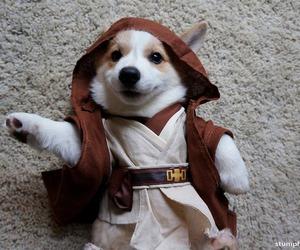 dog, jedi, and puppy image