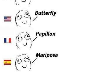 language, butterfly, and funny image
