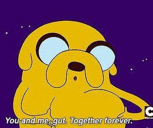 adventure time, JAKe, and fat image