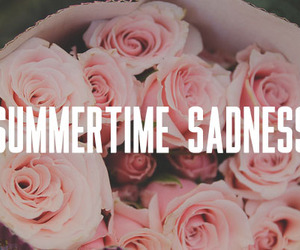 lana del rey, summertime sadness, and flowers image
