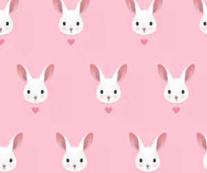 pink, background, and rabbit image