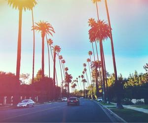 summer, california, and sun image