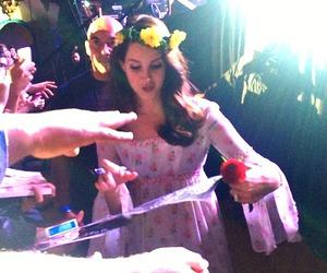 concert, fans, and lana del rey image