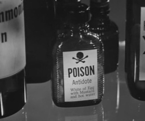 poison, black and white, and b&w image