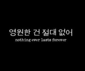 forever and nothing image
