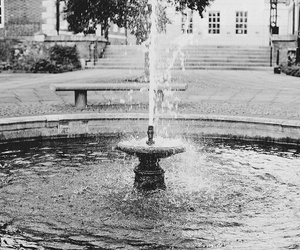 fountain and cute image