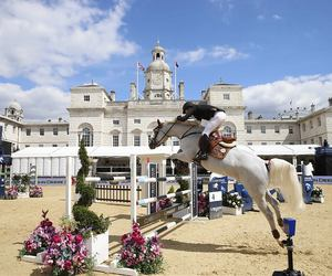 equestrian, fairytale, and horse image