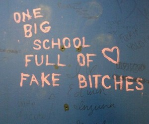 school, bitch, and fake image