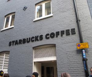 brand, shop, and starbucks image